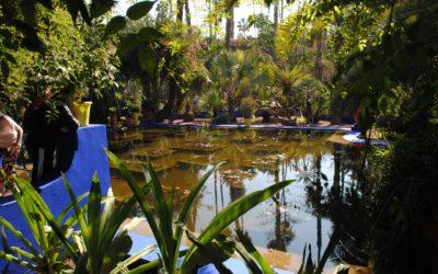 4 idées pour une bordure de bassin naturelle et esthétique